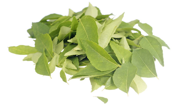 frunze de curry